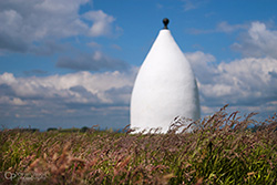 White Nancy in the long grass
