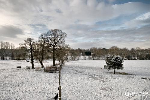 Prestbury Winter