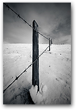 Fence to Cusp, Prestbury, Cheshire
