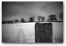 Contour in Snow, Prestbury, Cheshire