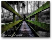 Prestbury, Tytherington Bridge