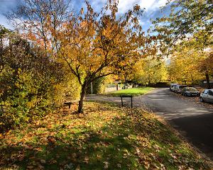 autumn Prestbury