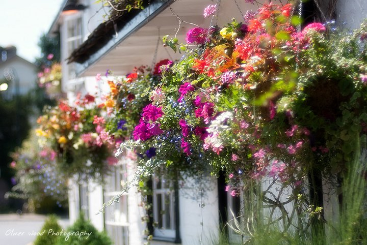 Legh Arms Hanging Baskets