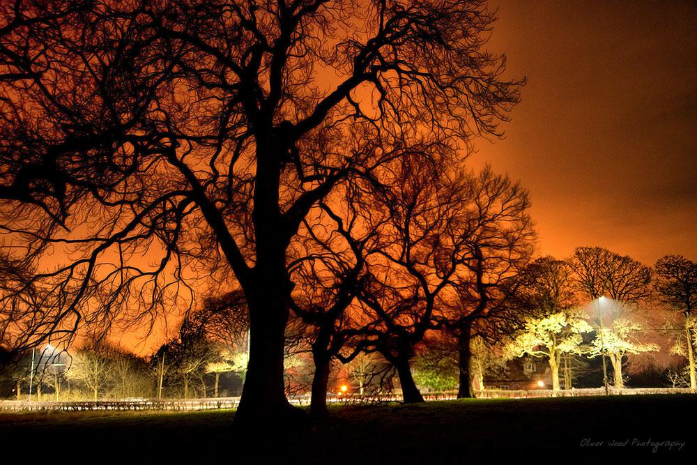 Macclesfield Night