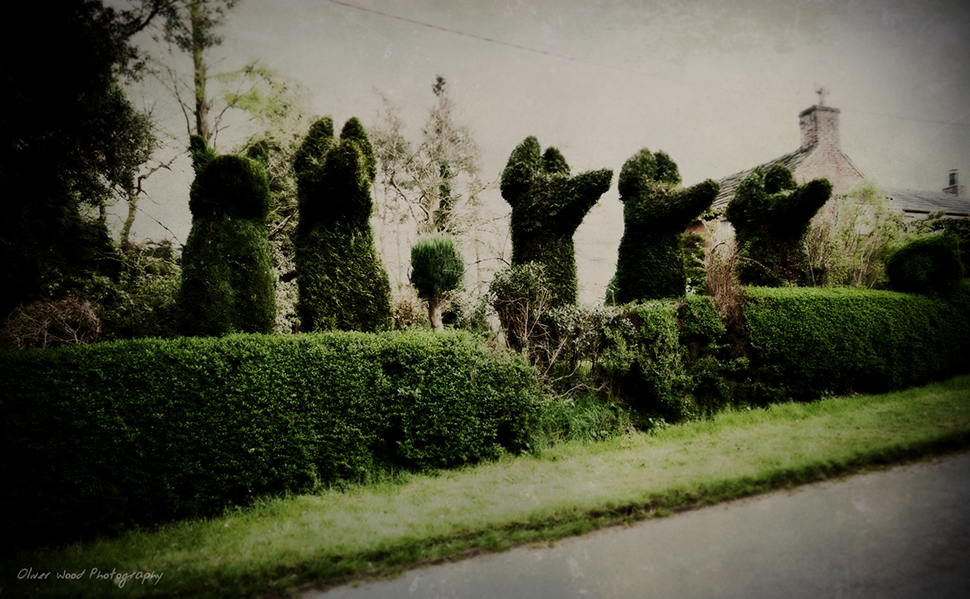Topiary, Over Peover, Cheshire