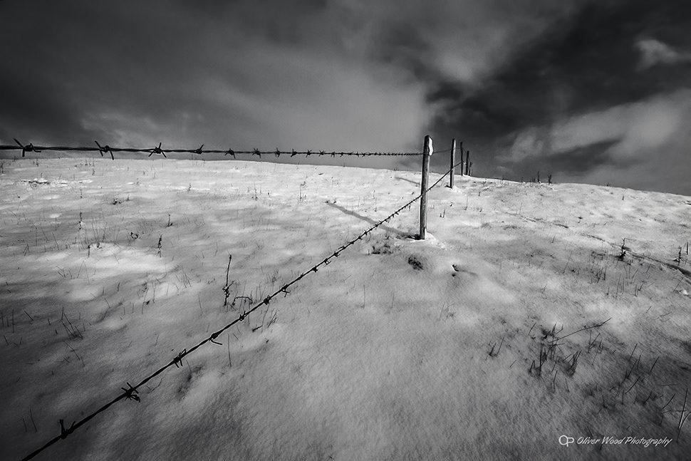 Winter in The Fields
